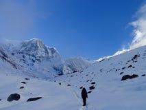 Passeggiata di Annapurna ad ABC Nepal Fotografia Stock Libera da Diritti