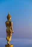 Passeggiata di Buddha nel paradiso Immagini Stock
