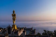 Passeggiata di Buddha nel paradiso Fotografia Stock