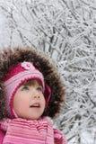 Passeggiata di inverno Fotografie Stock Libere da Diritti