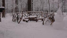 Passeggiata di inverno nel parco Mazurino archivi video