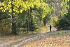 Passeggiata di mattina intorno alla città di Vinnitsa 1 Fotografie Stock