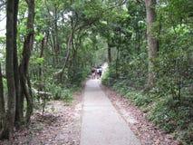 Passeggiata di Ngong Ping Fun, isola di Lantau, Hong Kong fotografia stock libera da diritti