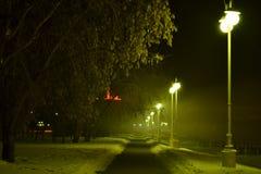 Passeggiata di notte Fotografia Stock