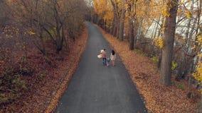 Passeggiata felice della famiglia al parco all'autunno con poca antenna del bambino stock footage