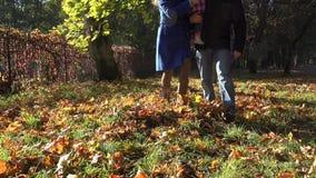 Passeggiata felice della famiglia con il giovane figlio sulle mani nel parco autunnale di stagione 4K video d archivio