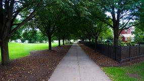 Passeggiata giù il percorso dell'istituto universitario Immagine Stock Libera da Diritti