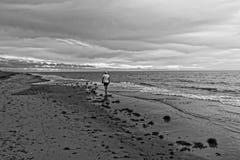 Passeggiata isolata sulla spiaggia Fotografia Stock