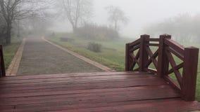 Passeggiata lungo il vicolo pedonale nel parco archivi video