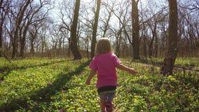 Passeggiata nelle ragazze della foresta archivi video