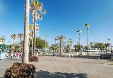 passeggiata Palma-allineata Fotografie Stock Libere da Diritti