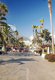 passeggiata Palma-allineata Fotografia Stock