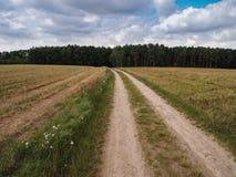 Passeggiata a partire dalla città alla natura Fotografie Stock Libere da Diritti