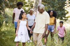 Passeggiata senior della nipote e dell'uomo di colore con la famiglia in legno immagine stock libera da diritti