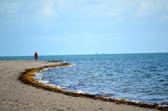 Passeggiata sola della spiaggia a terra Fotografia Stock