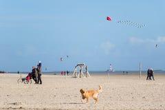 Passeggiata sulla spiaggia della st Peter Ording fotografie stock libere da diritti