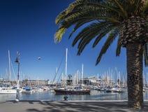 Passeggiata urbana del porticciolo nella regione del vell del porto di Barcellona spagna immagini stock libere da diritti