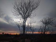 Passeggiate calme di autunno fotografia stock libera da diritti