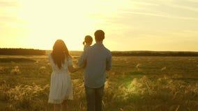 Passeggiate della mamma e del papà con la sua piccola figlia nelle sue armi nei raggi di un tramonto nel campo Famiglia che gioca archivi video