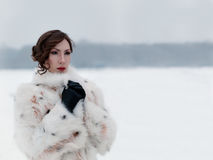 Passeggiate di inverno Aria aperta di Kuskovo Mosca immagine stock libera da diritti