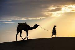 Passeggiate di un locale del deserto un cammello con il deserto del Thar Immagine Stock Libera da Diritti