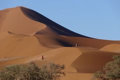 Passeggiate lungo le dune di sabbia rosso-arancio pittoresche, plateau di Sossousvlei, parco nazionale di Namib Naukluft, Namibia fotografie stock libere da diritti