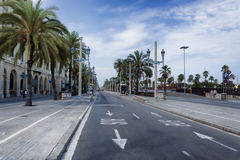Passeig de Colom a Barcellona Immagine Stock Libera da Diritti