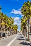 Passeig Isabel και πηγή Geni catala-Βαρκελώνη, Ισπανία στοκ φωτογραφίες