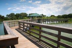 Passeio à beira mar Cay Wetlands verde fotos de stock royalty free