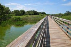 Passeio à beira mar Cay Wetlands verde fotografia de stock royalty free