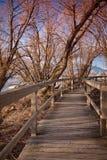 Passeio à beira mar com a área natural Foto de Stock