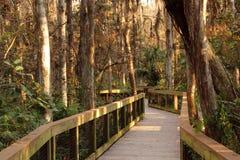 Passeio à beira mar de Cypress imagem de stock royalty free
