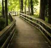 Passeio à beira mar de madeira Fotografia de Stock