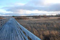 Passeio à beira mar de madeira vazio em um campo foto de stock royalty free