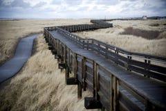 Passeio à beira mar do enrolamento através da grama alta Fotografia de Stock Royalty Free