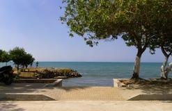 Passeio à beira mar em uma cidade costeira com pescadores Vista do oceano com uma árvore fotos de stock royalty free