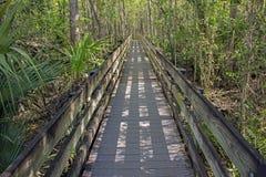 Passeio à beira mar longo na conserva do pântano Fotos de Stock Royalty Free
