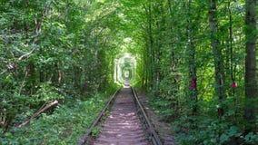 Passeio ao longo do túnel do amor video estoque