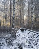 Passeio ao redor em lapland finlandês foto de stock royalty free