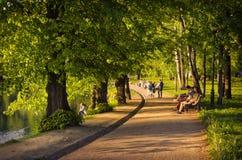 Passeio através das aleias verdes do jardim de Tavrichesky fotografia de stock royalty free
