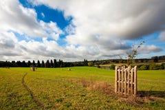 Passeio através de um campo sob um céu azul nebuloso Fotos de Stock Royalty Free