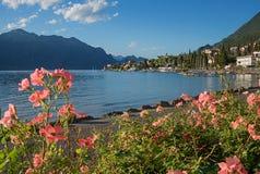 Passeio bonito da beira do lago do malcesine com rosas de florescência Imagens de Stock Royalty Free