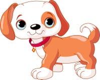 Passeio bonito do filhote de cachorro Imagem de Stock