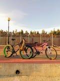 Passeio da bicicleta fotos de stock royalty free