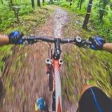 Passeio da bicicleta Imagens de Stock