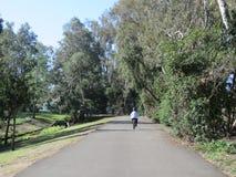 Passeio da bicicleta no parque do Huntington Beach fotos de stock royalty free