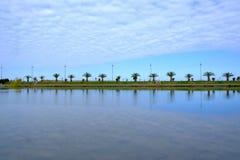 Passeio de Batumi alinhado com palmeiras Foto de Stock Royalty Free
