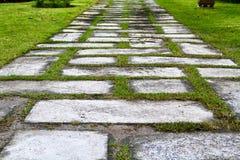 Passeio de pedra no parque Imagem de Stock