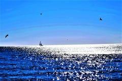 Passeio do barco na água cintilante Fotos de Stock Royalty Free