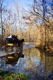 Passeio do cavalo & do carro do casamento Foto de Stock Royalty Free